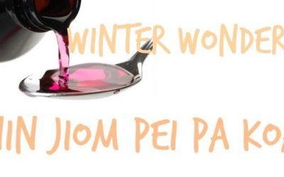 Winter Wonders   Nin Jiom Pei Pa Koa Cough Syrup